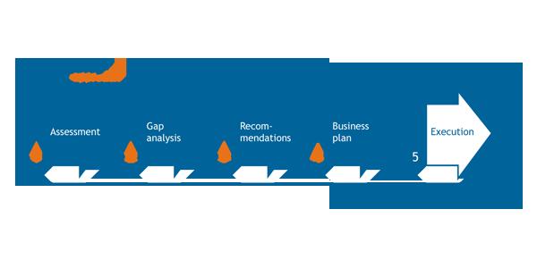 blue-mena-consultancy-approach